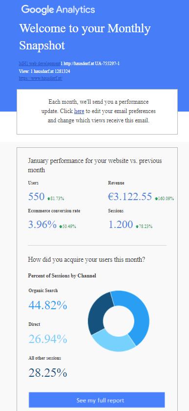 Google Analytics Snapshot Report